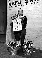 [Mr. Yoshinori Ideishi holding rose plants sent to Emperor and Empress of Japan, February 1956]