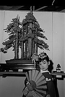 [California Bonsai Society 11th annual exhibition at California Museum of Science and Industry, Los Angeles, California, April 7-14, 1968]
