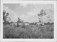 [Water tank and buildings across field, Rohwer, Arkansas, 1942-1945]