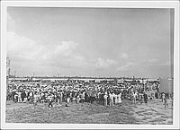 [Large crowd attending outdoor funeral, Rohwer, Arkansas]