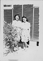 [Two young women standing in front of barracks wall next to shrub, Rohwer, Arkansas]