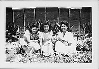 [Three young women crouching in flowerbeds, Rohwer, Arkansas]