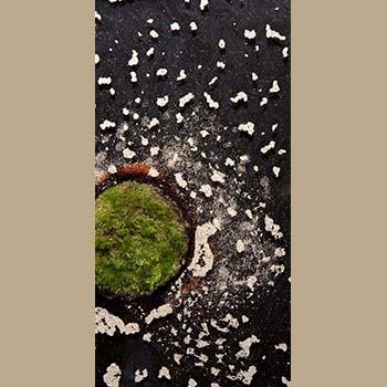 Island 3 by Emily Hanako Momohara
