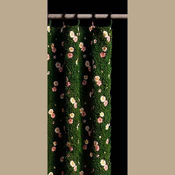 Curtain by Emily Hanako Momohara
