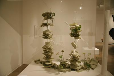 Week 5 ikebana documentation #6
